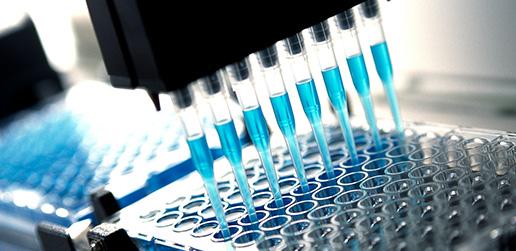 Inycom Biotech: Desarrollos y Proyectos Biotecnológicos